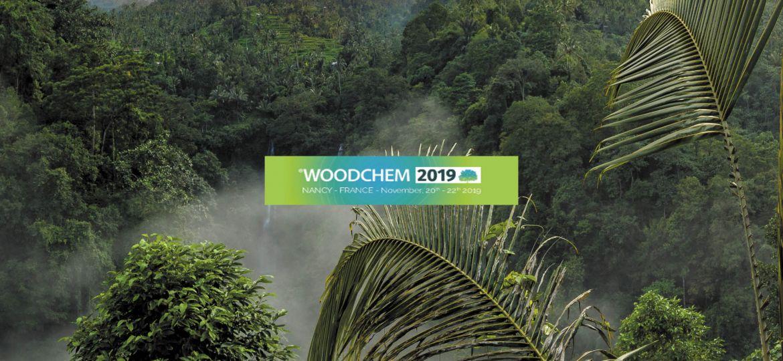biostratege-woodchem2019