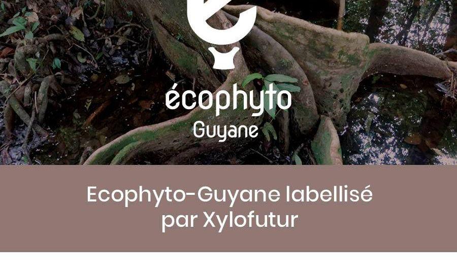label xylofutur insta